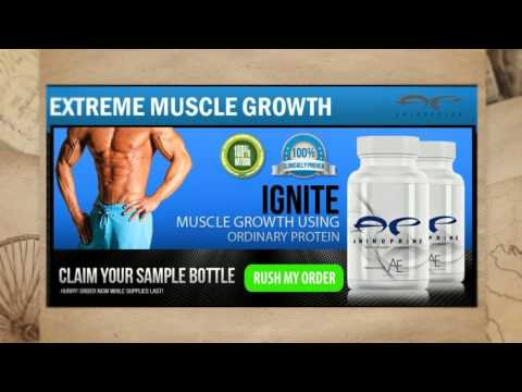 Amino Prime Reviews