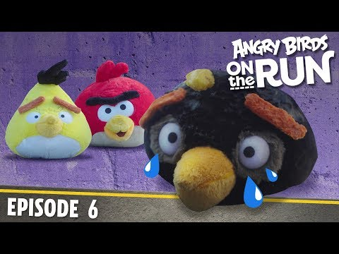 Angry Birds- Na útěku - 6 - Vloupání