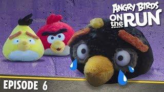 Angry Birds- Na úteku - 6 - Vlámanie