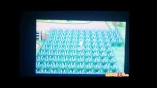 Pokémon XY Cómo Capturar Pokémon Shiny Con El