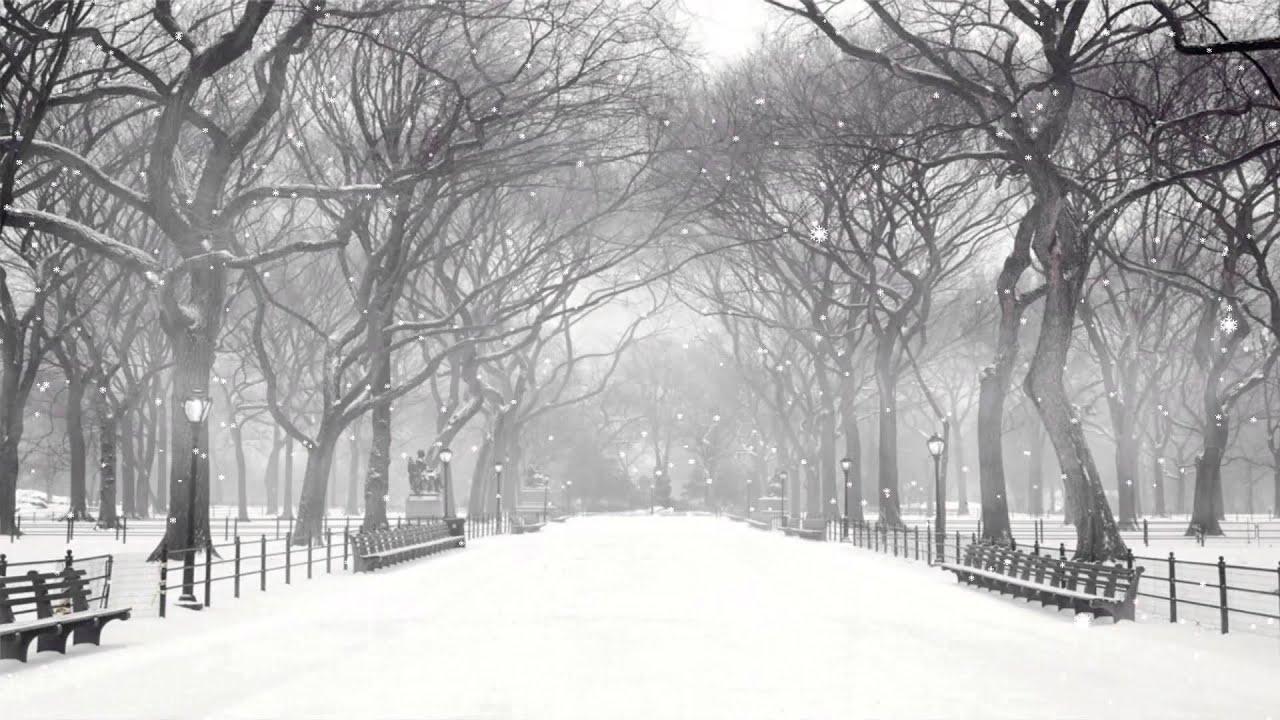Winter Snow Screensaver 2 0 - YouTube