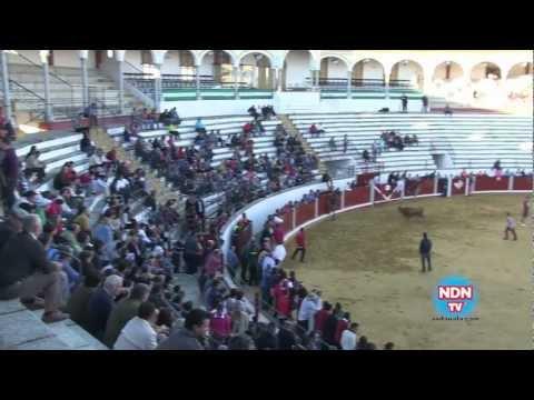 Lluvia en Pozoblanco, Sorteo Toros del Sábado y Vaquillas del Aguardiente - Especial Feria (7)