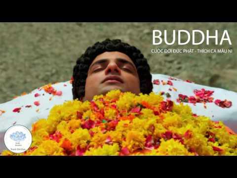 BUDDHA - Cuộc Đời Đức Phật Thích Ca Mâu Ni - Tập Cuối - Rất Hay