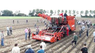Dewulf Potato Harvesting
