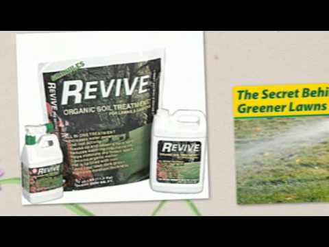 Lawn Weed Control and Revive @ Jared's Nursery, Gift and Garden Center Littleton CO 80127