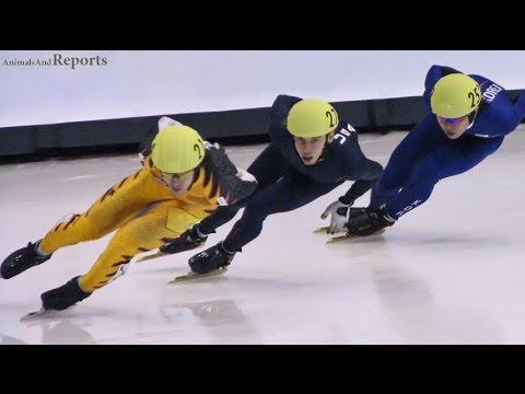 Sochi Olympics - From Athletes to Olympians (ST Speed Skating)