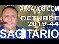 Video Horóscopo Semanal SAGITARIO  del 27 Octubre al 2 Noviembre 2019 (Semana 2019-44) (Lectura del Tarot)