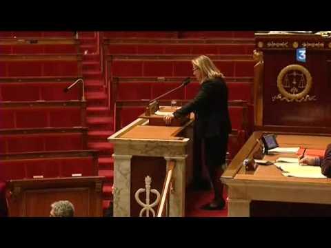 Vote loi inceste Marie-Louise Fort / France 3/ 27 janvier 2010