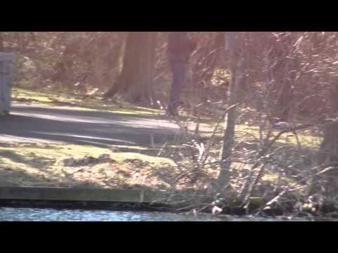 Fishing report - Opening Day Verona Park 2013-1/1 Video