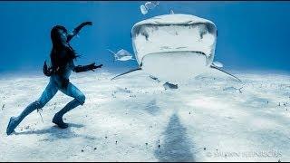 イタチザメと踊る女性