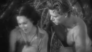 Tarzan The Ape Man (1932) Tarzan Returns Jane