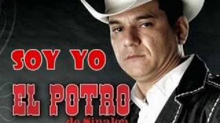 Soy yo (audio) El Potro de Sinaloa