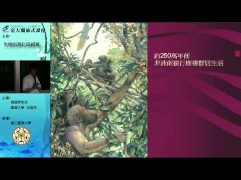 八、人類的起源與演化