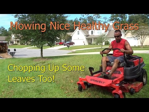 Mowing Thick Healthy Grass with Zero Turn Mower  - Gravely ZTR