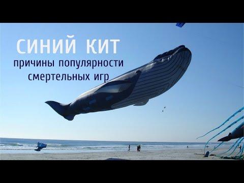 Синий кит | Причины популярности суицидальных игр