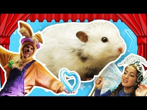 نطنط نهار وأرنوب الحبوب | العرض الكبير لأرنوب | Arnoobs Big Show