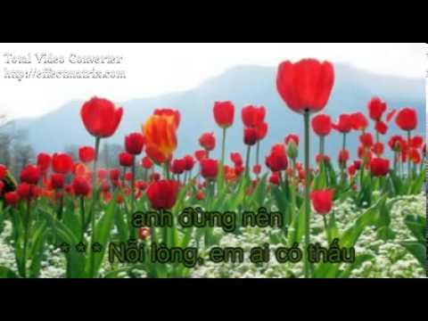 Chu Hieu Chu Tinh karaoke Pham Thanh Thao  YouTube