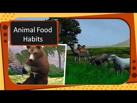 Science - Animal type -- By eating Habits - English
