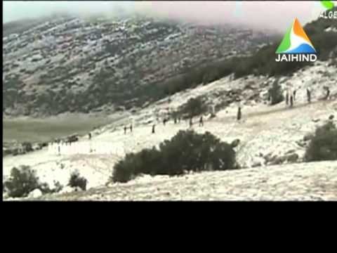 algeria plane crash, 12.02.2014,Jaihind TV, Morning News