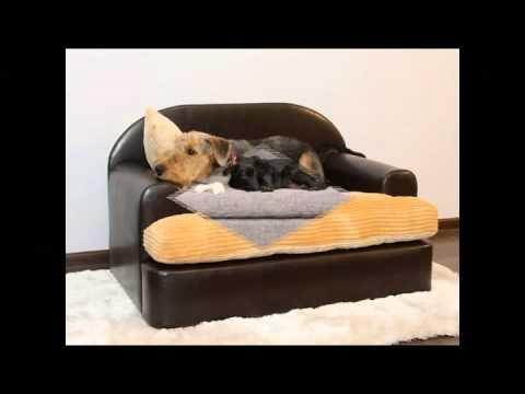 Fabricacion de sofas para perros youtube - Mejores marcas de sofas ...