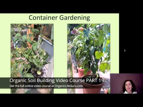 Backyard Organic Container Gardening