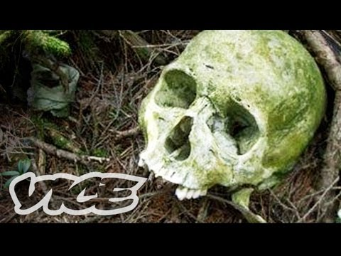 Suicide Forest in Japan, The Aokigahara Forest is the most popular site for suicides in Japan. After the novel Kuroi Jukai was published, in which a young lover commits suicide in th...