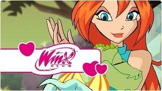 Winx Club Saison 3 Épisode 15 La Quête Du Dragon