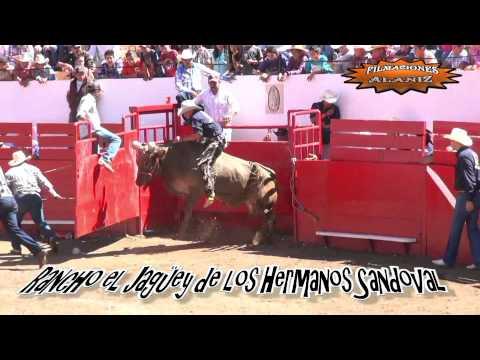 Torneo Nacional de Toros de Reparo Autlán  Jalisco Sábado 27 de Abril   6 pm