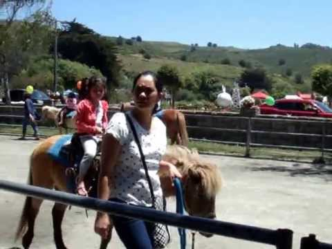Lemos Farm Pony Ride for Kids