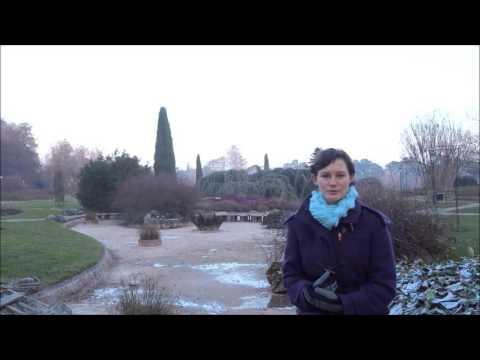 Lucille Goddaert, Cégep Limoilou