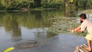 Madhabpur lake, Syhlet Caught Katol fish Babu and manu with the group