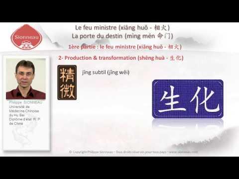 Médecine chinoise   Feu Ministre   Philippe Sionneau