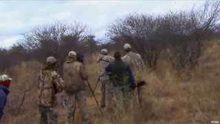 Exciting Lion Hunt in Africa