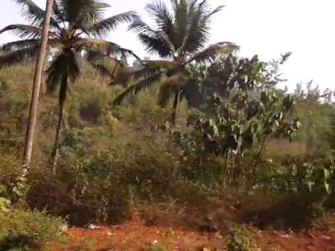 Goa Roads-Beautiful Goa roads,Goa Journey