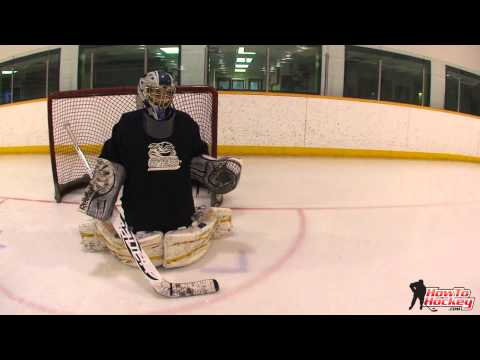 Shooters Illusion - How to See the Net through the Eyes of the Puck
