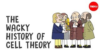 The Wacky History of Cell Theory