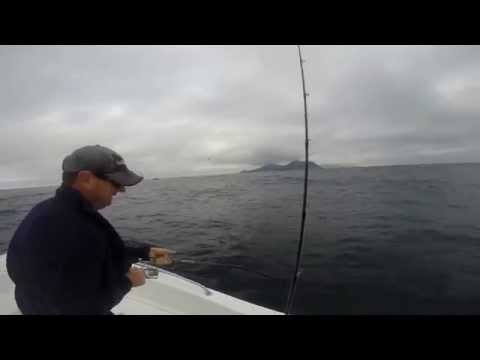 Offshore Fishing South Africa