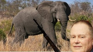 Go Daddy Elephant Killer CEO Under Fire