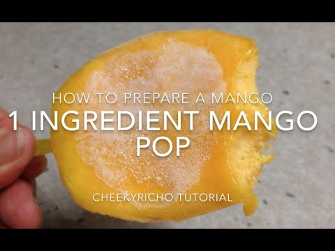 Mango Pospsicle 1 Ingredient cheekyricho tutorial