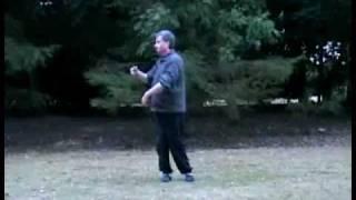 Cheng Man Ching 37 Posture Short Form Yang Tai Chi