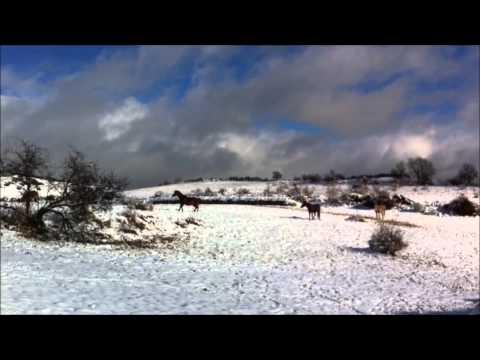 Video Revolcada amb sol i neu Autor: Imgagen Miniatura Youtube