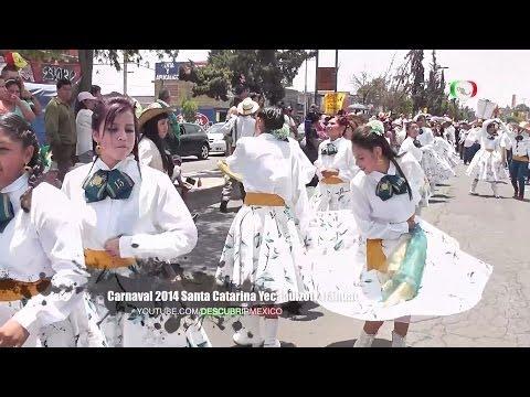 CARNAVAL DE SANTA CATARINA YECAHUIZOTL EN TLÁHUAC FULL HD  2014