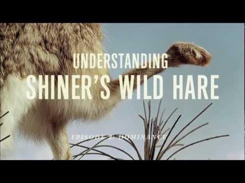 Shiner''s Wild Hare Pale Ale: Dominance