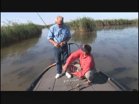 Bass of the Mississippi River Delta (Part 1)