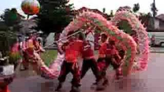 Chinese New Year Dragon Dance