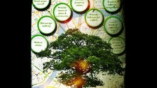 How To Create A Tree Diagram In Excel