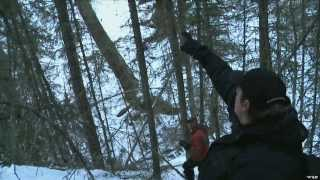 Epic Mountain Lion Hunt in Canada