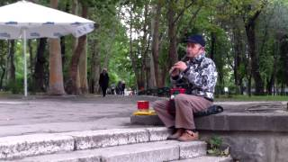 """Delectează trecătorii cu piesa """"Să-mi cânți, cobzar"""" la intrarea în Parcul Central"""