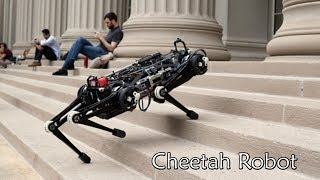 Vision-free Blind Cheetah Robot From MIT Can Run Up Stairs Without Watching Its Steps.