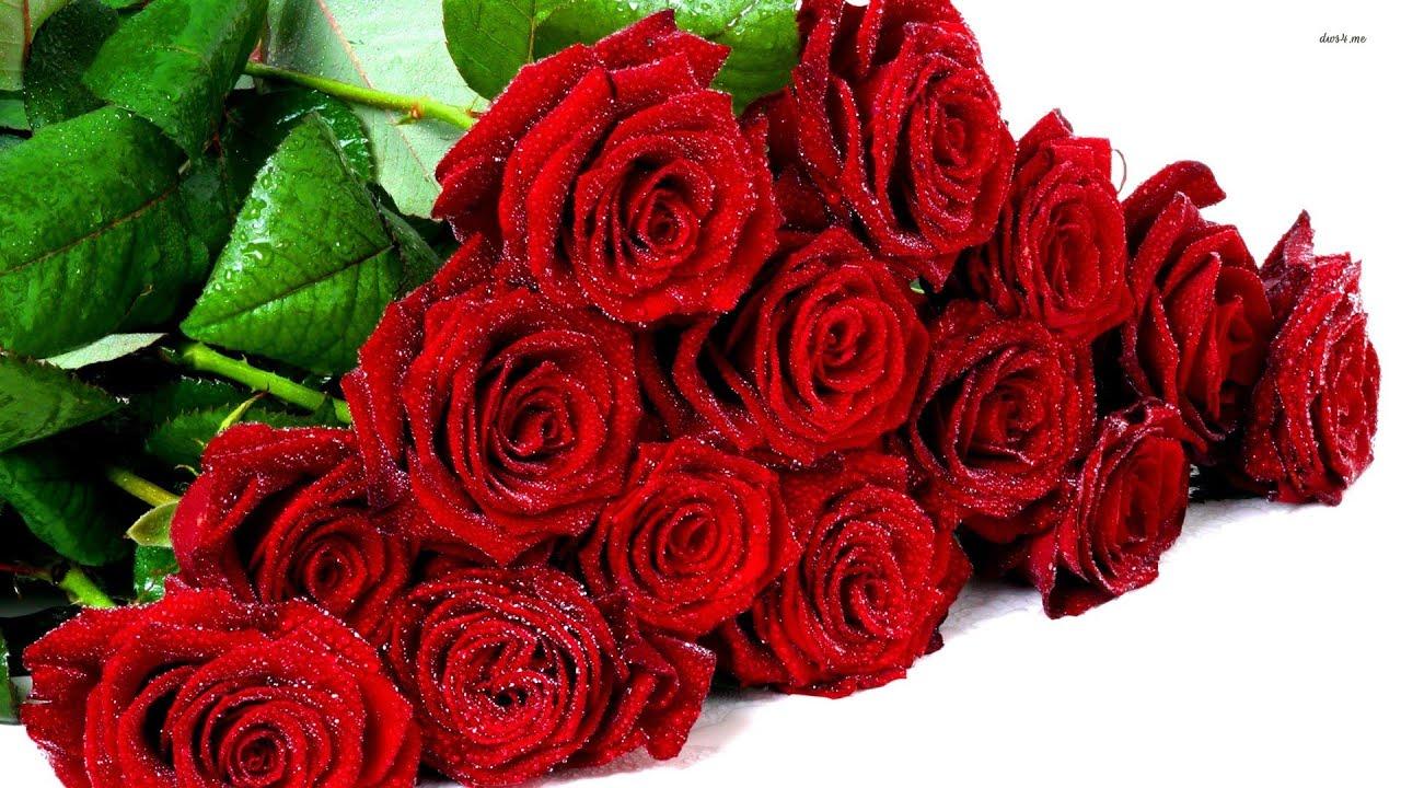 Поздравление 9 роз для тебя 97